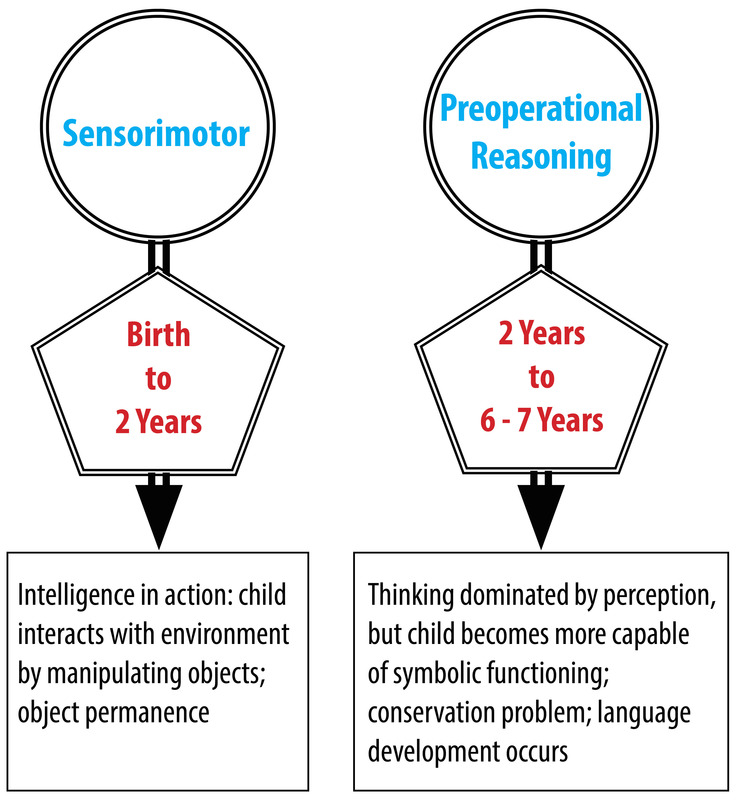 a summary on cognitive development in Information processing and cognitive development information processing is a perspective (approach) to the study of cognition and cognitive development in which the mind is likened to a computer.